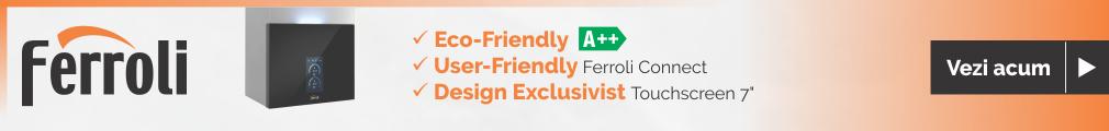 centrala termica ferroli maxima